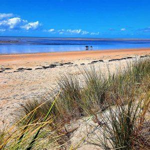 """plage de Annoville à 16 km des gabriolleries plage """"natura 2000"""""""